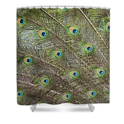Iridescent Feathers 2 Shower Curtain