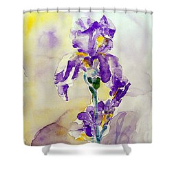 Shower Curtain featuring the painting Iris 2 by Jasna Dragun