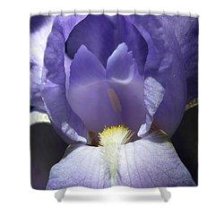 Iris 2 Shower Curtain