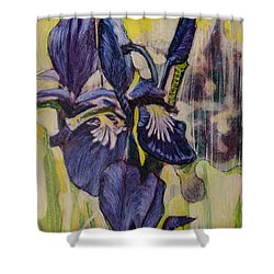Shower Curtain featuring the painting Iris-2016 by Ron Richard Baviello