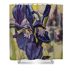 Iris-2016 Shower Curtain