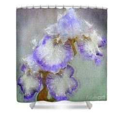 Iris After The Rain Shower Curtain