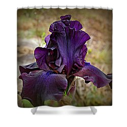 Iris Beauty Shower Curtain