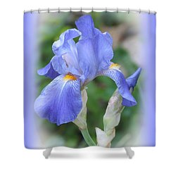Iris Beauty Shower Curtain by MTBobbins Photography