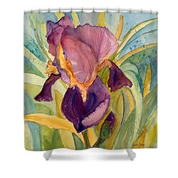 Iris Bloom Shower Curtain