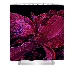 Iris Deep Red Glow Shower Curtain