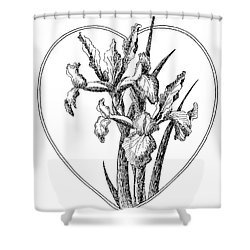 Iris Heart Drawing 3 Shower Curtain