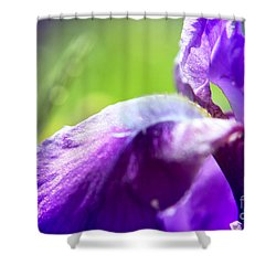 Iris In Moscows Garden Shower Curtain