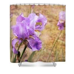 Iris Shower Curtain by Lena Auxier