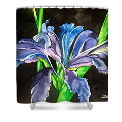 Iris Shower Curtain by Lil Taylor