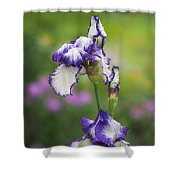 Shower Curtain featuring the photograph Iris Loop The Loop  by Rona Black