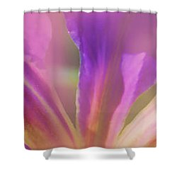Iris Panorama Shower Curtain