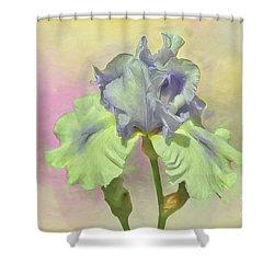 Iris Pastels Shower Curtain