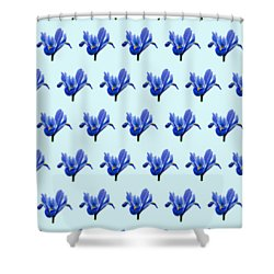 Shower Curtain featuring the photograph Iris Recticulata-2 by Paul Gulliver