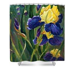 Iris Shower Curtain by Renate Nadi Wesley
