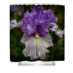 Shower Curtain featuring the photograph Iris Standout by Jean Noren