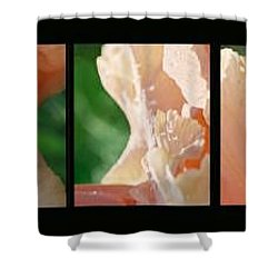 Shower Curtain featuring the photograph Iris by Steve Karol