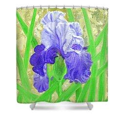 Iris Valor Shower Curtain