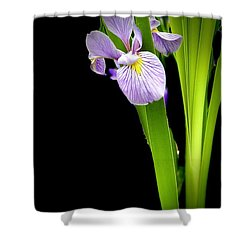 Shower Curtain featuring the photograph Iris Via Iphone by Onyonet  Photo Studios