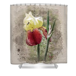 Iris Watercolor Shower Curtain