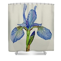 Iris You Were Here Shower Curtain