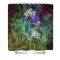 Irises 6618 Idp_3 Shower Curtain