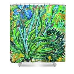 Irises Ala Van Gogh Shower Curtain by Carolyn Donnell