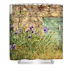 Irises At The Old Barn Shower Curtain