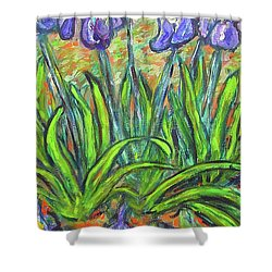Irises In A Sunny Garden Shower Curtain by Carolyn Donnell