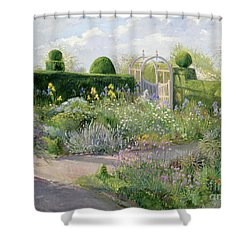 Irises In The Herb Garden Shower Curtain