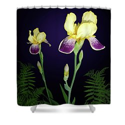 Irises In The Night Garden Shower Curtain by Tara Hutton