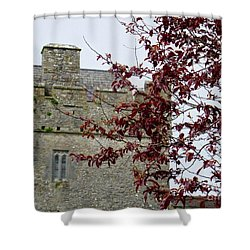 Irish Beauty Shower Curtain