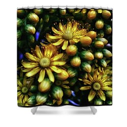 Shower Curtain featuring the photograph Irish Rose. Also Known As Pinwheel by Mr Photojimsf