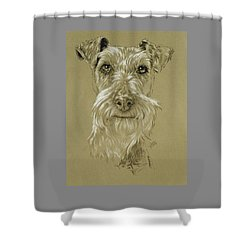 Irish Terrier Shower Curtain