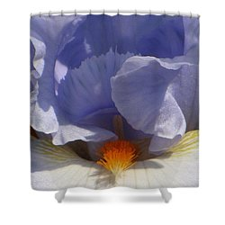Iris's Iris Shower Curtain