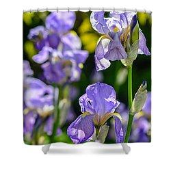 Irisses Shower Curtain