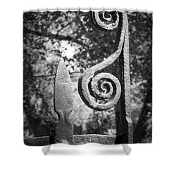 Iron Gate Detail County Clare Ireland Shower Curtain by Teresa Mucha