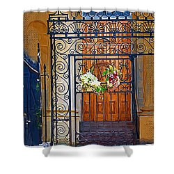 Shower Curtain featuring the photograph Iron Gate by Donna Bentley
