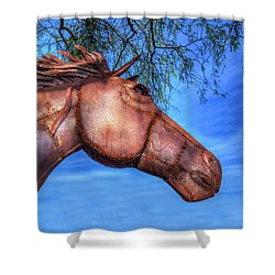 Shower Curtain featuring the photograph Iron Horse by Paul Wear