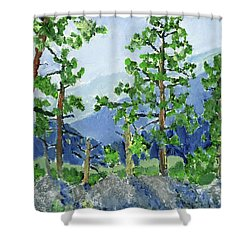 Iron Mountain Road Shower Curtain