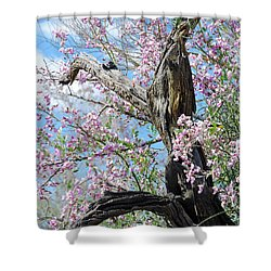Ironwood In Bloom Shower Curtain