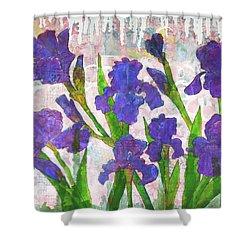 Irresistible Irises Shower Curtain