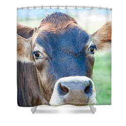 Is It Dinner? Shower Curtain