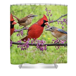 Is It Spring Yet? Shower Curtain by Bonnie Barry