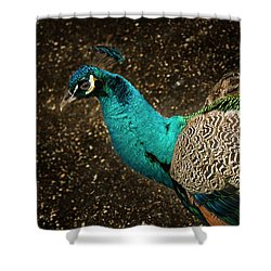 Is She Looking ? Shower Curtain by Jean Noren
