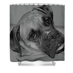 Is This Necessary Shower Curtain by DigiArt Diaries by Vicky B Fuller