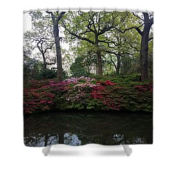 Shower Curtain featuring the photograph Isabella Plantation by Hanza Turgul