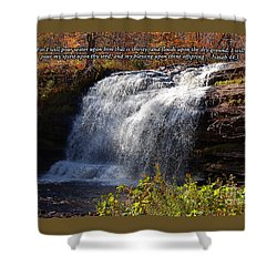 Shower Curtain featuring the photograph Isaiah 44 by Diane E Berry