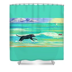 Islamorada Dog Shower Curtain by Anne Marie Brown