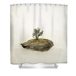 Island In The Stream Shower Curtain